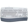 Scheda Tecnica: Logitech Tastiera Oem - USA Internet Keyboard with MM Access, Black logo